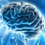 Evidence That  A Brain Healthy Lifestyle Is In Your Hands