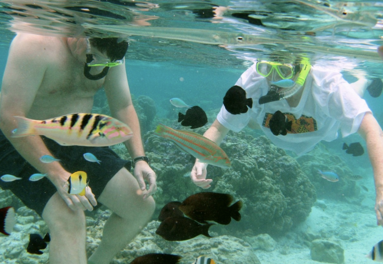 Drift snorkeling in amazingly clear water.